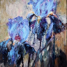 Evenins irises
